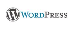 MBA in Digital Marketing tools-WordPress